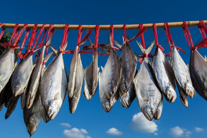 鹹魚臘味 鼻咽癌元凶 「越細個食越高危」