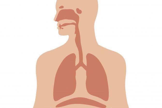 勿怕副作用延治鼻咽癌