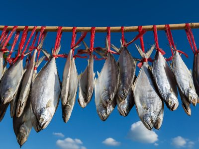 salted-fish