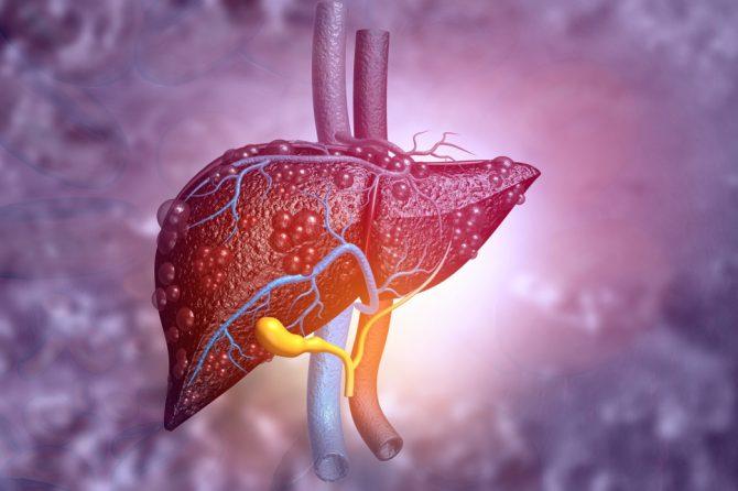肝臟也會長膿瘡嗎?